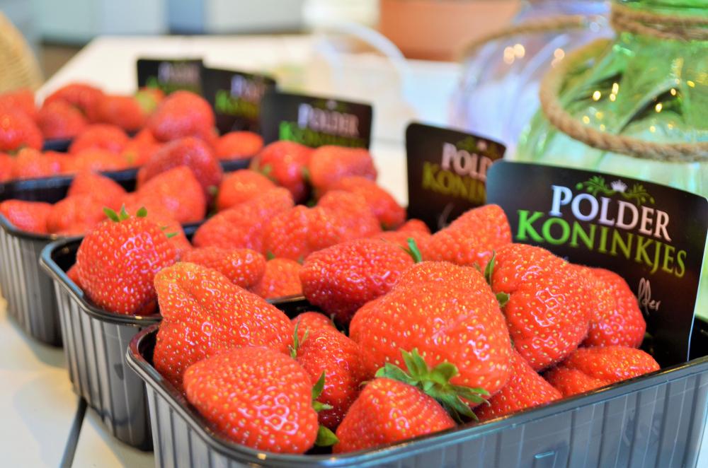 Aardbeien streekwinkel tuincentrum